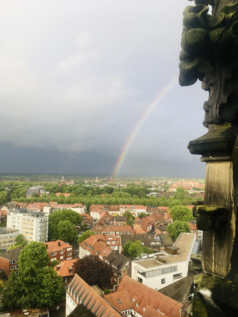 Regenbogen über Münster